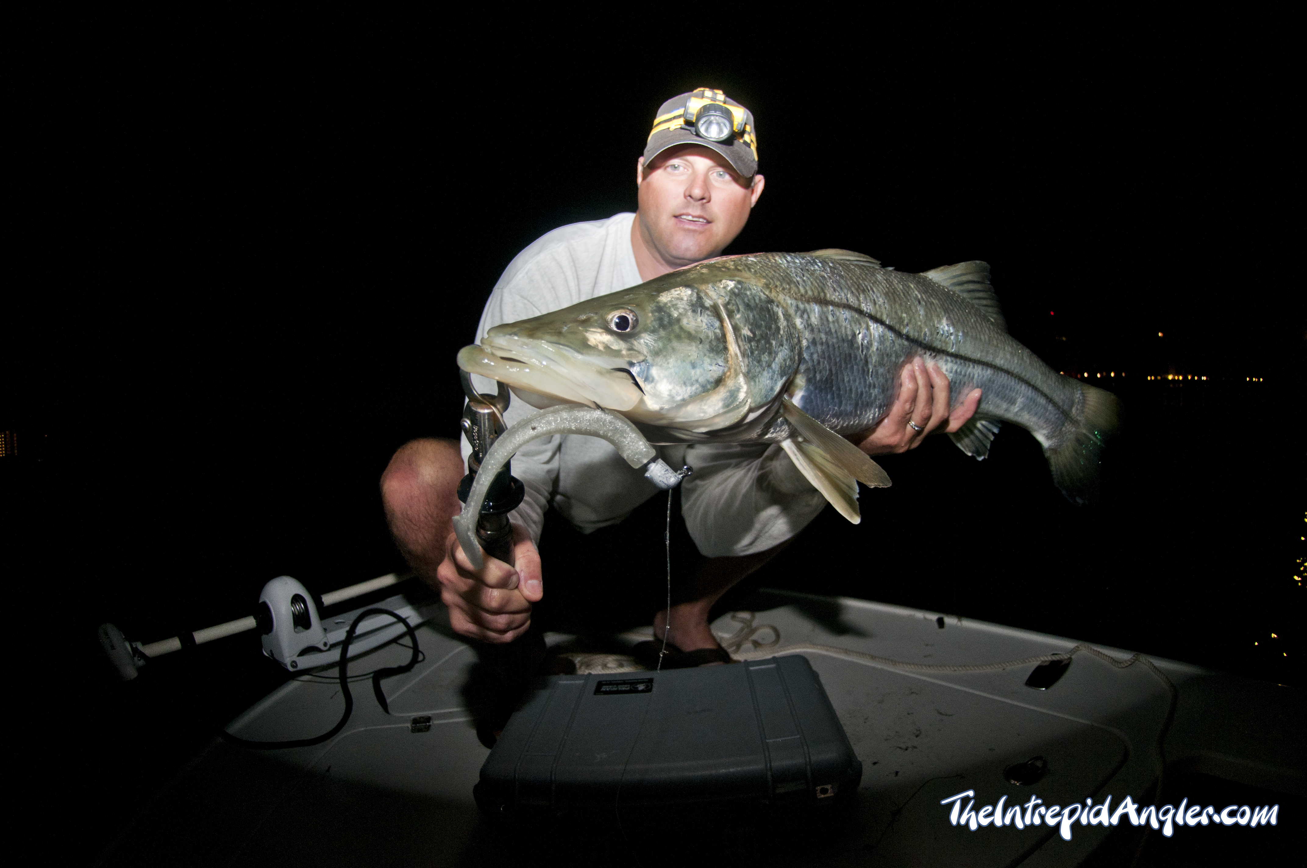 Snook-Jason-Thumper-Intrepid-Angler Loosing Sleep And Catching Fish Fishing Reports