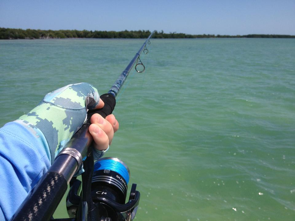 Gear Review: Shimano Sustain 10000 FG - The Perfect Tarpon