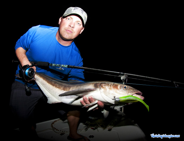 Hogy-Sewell-Cobia-IA-620x476 Late Winter Fishing Report Pine Island Sound - Ding Darling - Sanibel Island 2014 Reports Fishing Reports