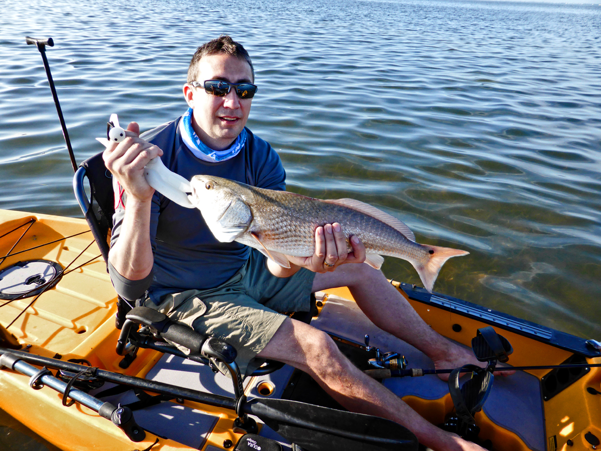 Fishing report early april pine island sound redfish for Cape coral fishing report