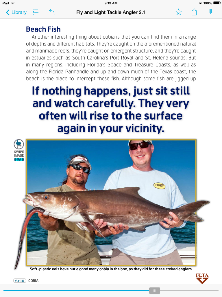 image-1 The Intrepid Angler - Fly and Light Tackle Angler Cobia Article Media