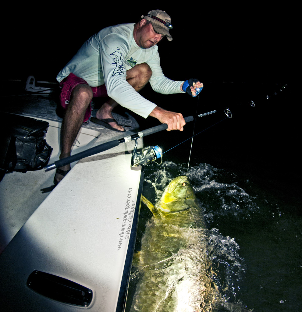 Crews-Estrada-Boatside-Tarpon-WM-991x1024 Into June and Lots More Poon 2014 Reports Fishing Reports Tarpon Videos Videos