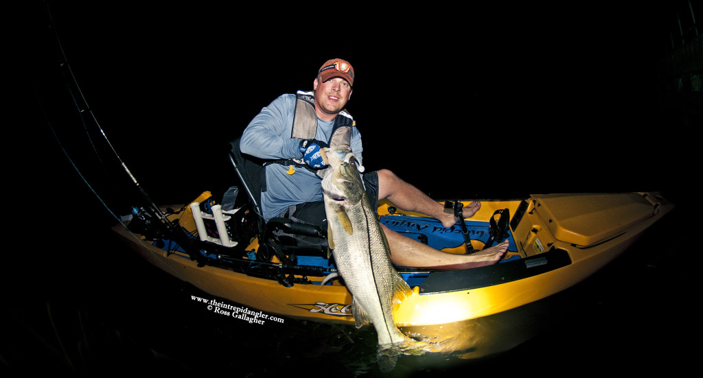 Ross-44inch-Hobie-Hogy-Snook-Paddle-Tail-WM-1024x551 Total Fishing Insanity - Late June Fishing Report for Fort Myers, Sanibel, Cape Coral 2014 Reports Fishing Reports