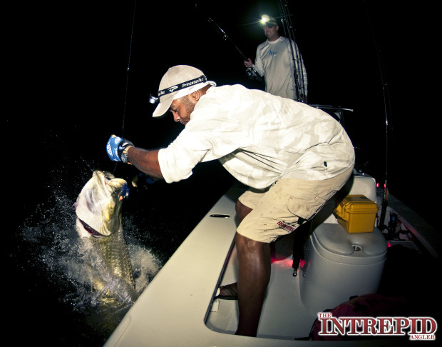 Jumping-Tarpon-Jay-Hogy-620x486 August Fishing Report: Dog Days for Tarpon, Snook & Redfish - Pine Island, Fort Myers, Cape Coral, Sanibel Island 2014 Reports Fishing Reports