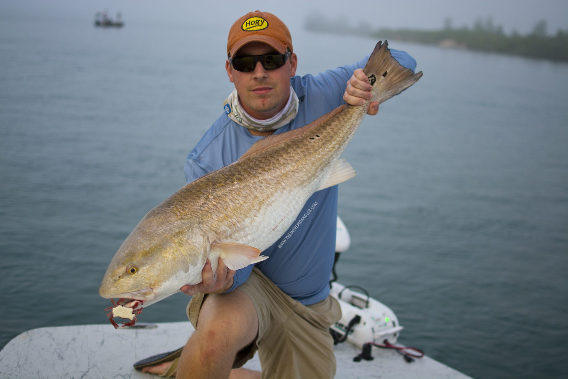 AFTCO-Crab-Redfish-WM.jpg