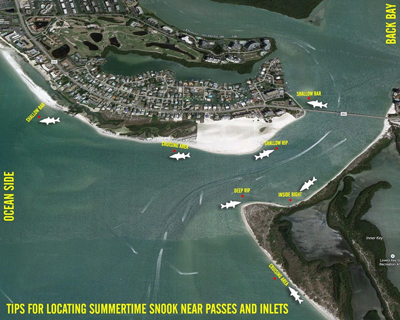 BEACH-SNOOK-DIAGRAM800-800x641 6 Tips for Beach Snook Fishing How-To Inshore Fishing