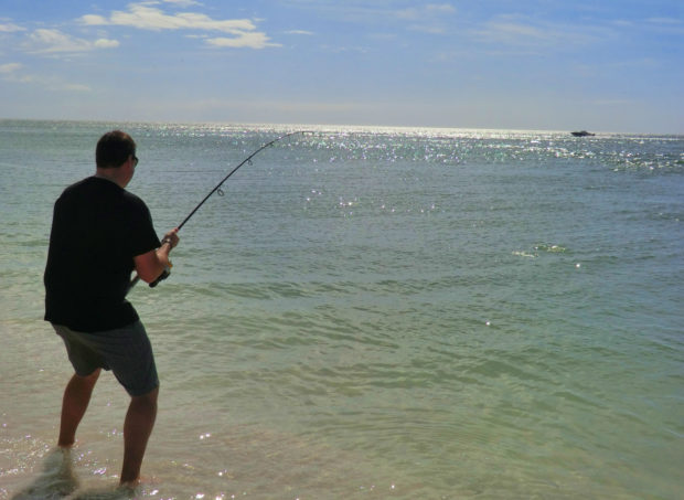 Beach-Snook-Hooked-Up-Scout-Look-1-620x453 6 Tips for Beach Snook Fishing How-To Inshore Fishing