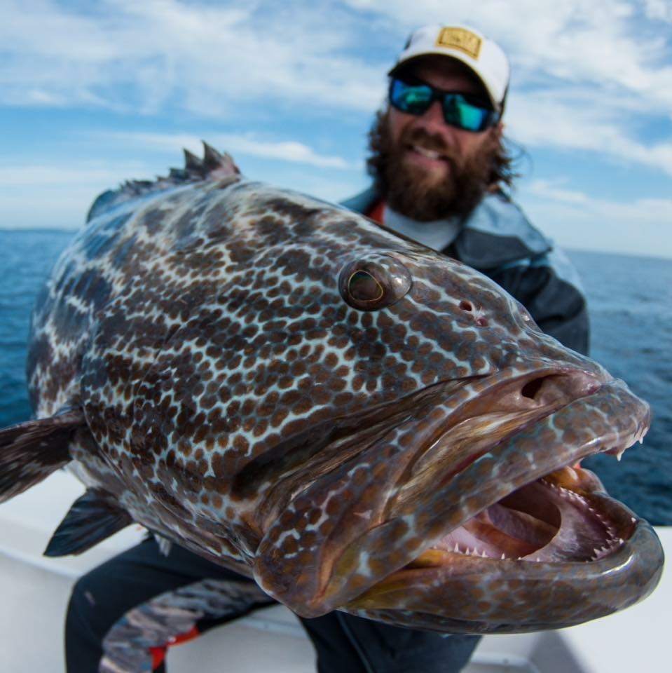 6 tips for tarpon best fishing leaders knots and lures for Best fishing in florida keys