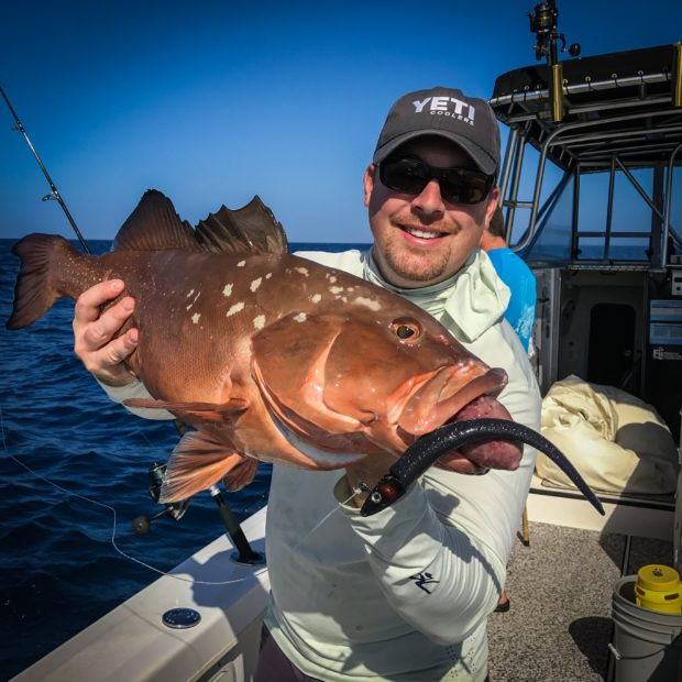 IMG_5181-2-620x620 2017 Opener: Offshore Grouper | Snapper 2017 Reports Fishing Reports