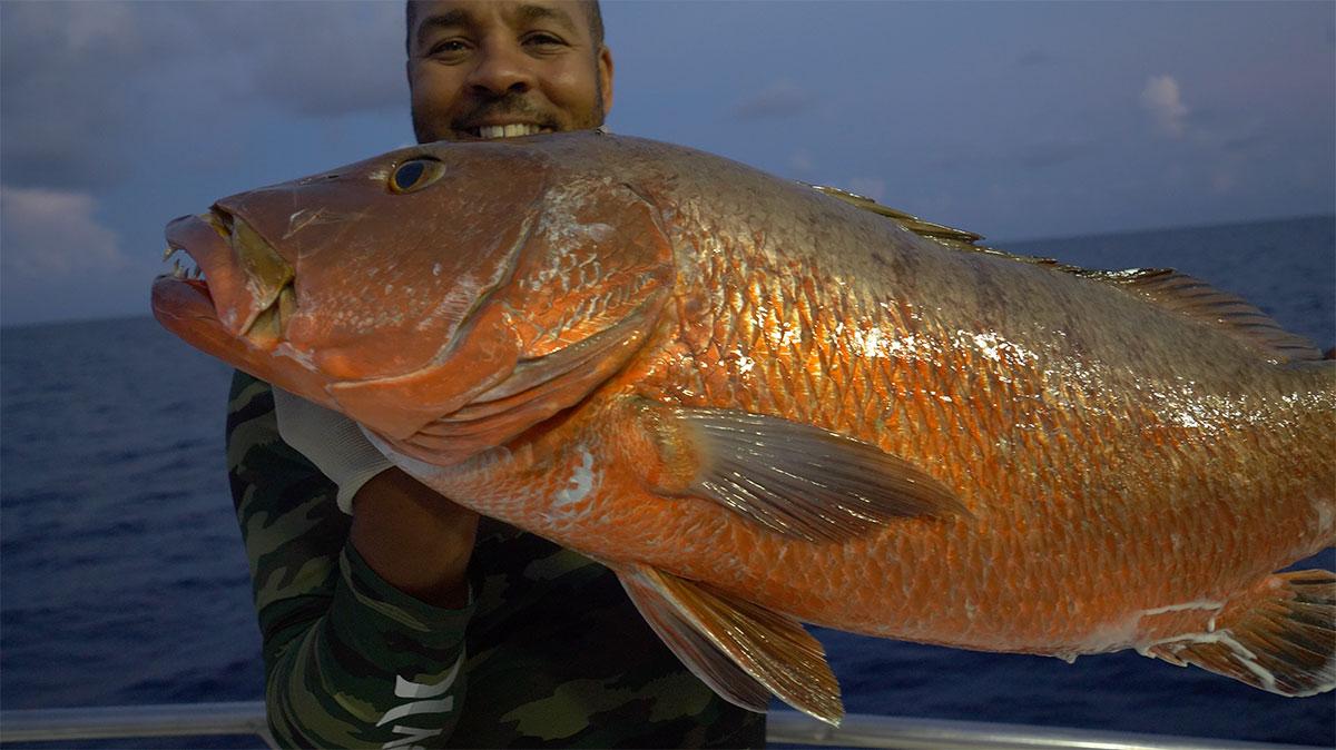 Dry-Tortugas-Cubera-Snapper Video: Dry Tortuga's Party Boat Wreck Fishing How-To Offshore Fishing Videos
