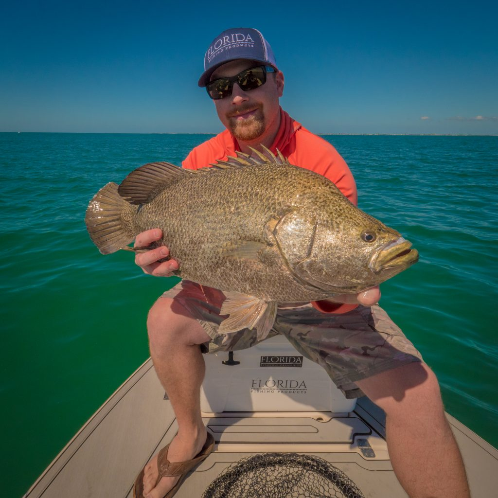 Osprey-Tripletail-1024x1024 Hands On: FFP Osprey Reel - Spring Tripletail Fishing 2018 Reports Fishing Reports Product Reviews
