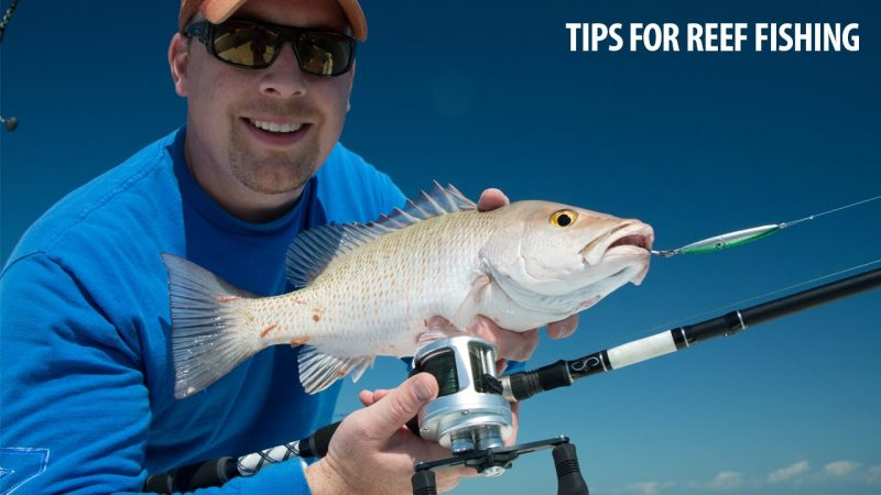 how-to-tips-for-fishing-artifici-800x450 How To: Tips For Fishing Artificial Reefs Blog How-To Videos