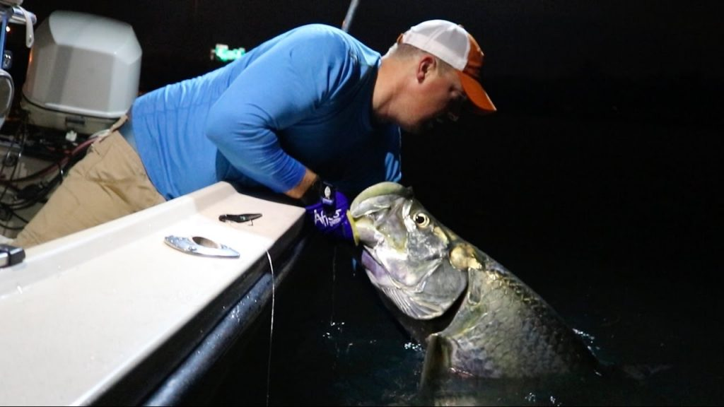 miami-tarpon-fishing-1024x576 6 Tips for Tarpon: Best Fishing Leaders, Knots and Lures Blog How-To Inshore Fishing Product Reviews Tarpon Videos Videos