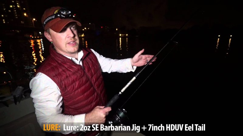 video-winter-miami-tarpon-fishin-800x450 VIDEO: Winter Miami Tarpon Fishing 2016 Reports Fishing Reports Tarpon Videos Videos