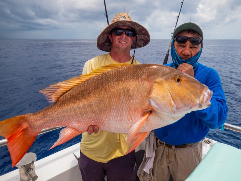 P1011044-2-800x600 Fishing The Dry Tortuga's Aboard Sea Trek Fishing - Mid Summer Report 2018 Reports